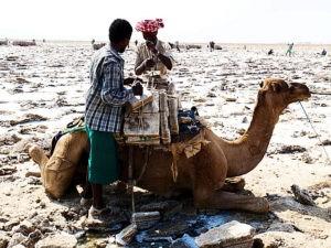 ethiopie-2019-danakil-travailleurs-du-sel